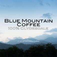 牙買加-克里斯戴爾‧日曬藍山 No.1 (200g) + 送100g精品豆