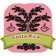哥斯大黎加‧紅蜜處理 (200g)