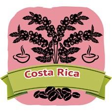 哥斯大黎加‧美洲豹 (200g)