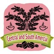 商用咖啡豆‧巴西‧喜拉多 (800g)