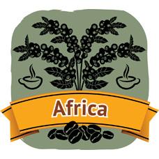 商用咖啡豆‧埃塞俄比亞‧西達摩 (800g)